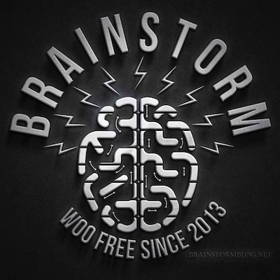 Brainstorm logo: top-down drawing of brain with lightning sparking off it. Additional text: Woo free since 2013.
